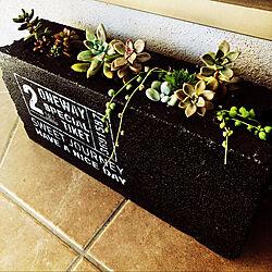 DIY/ハンドメイド/多肉植物/玄関/入り口のインテリア実例 - 2019-11-13 08:27:45