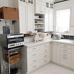キッチン/やっぱり猫が好き/いつもいいねやコメントありがとう♡/キッチンで便利なもの/雑貨...などのインテリア実例 - 2016-02-25 11:28:57