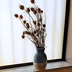 棚/季節を楽しむ暮らし/いいね♪いつもありがとうございます❤️/フォロワーの皆様に感謝です♫/ニゲラ...などのインテリア実例 - 2021-01-25 13:50:52