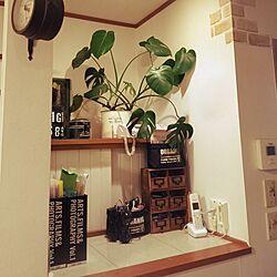 棚/男前/100均/DIY/観葉植物...などのインテリア実例 - 2016-05-11 22:31:53