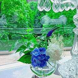 リビング/フラワーアレンジメント/花のある暮らし/あじさい/紫陽花...などのインテリア実例 - 2019-05-10 21:33:51