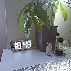 キッチン/IKEAの時計☆/パキラ/ホワイトインテリア/ホワイト...などのインテリア実例 - 2021-06-11 18:50:23