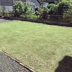 芝生のある家/芝生の庭/芝生/観葉植物増やしたい/白い壁...などのインテリア実例 - 2021-09-19 13:43:32