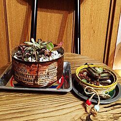 リビング/リメ缶/男前/兵庫支部/万博ロハスにてGET♡( ♥ᴗ♥ )...などのインテリア実例 - 2016-11-08 23:10:59