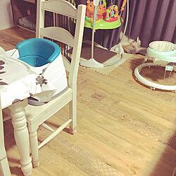 ペットサークル/ペットスペース/ジャンパルー/犬と暮らす家/犬と赤ちゃん...などのインテリア実例 - 2020-08-10 07:34:41