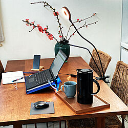 ダイニングテーブル/在宅ワーク/癒しセット/ティーポット/ステルトン...などのインテリア実例 - 2021-02-23 08:31:01