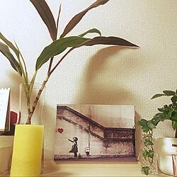IKEA購入品/IKEAの花瓶/ナチュラル/観葉植物/北欧...などのインテリア実例 - 2021-10-04 18:03:19