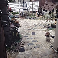 玄関/入り口/カメラマークが出たので(^^;;のインテリア実例 - 2015-02-26 17:44:23
