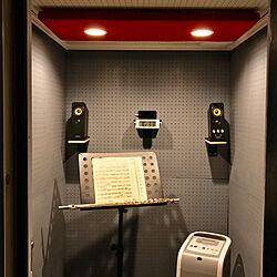 部屋全体/オリジナル照明器具/楽器/楽器のある生活/楽器部屋...などのインテリア実例 - 2017-08-19 17:06:50