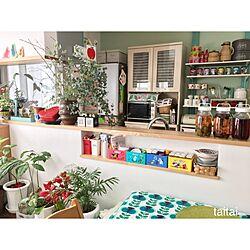 キッチン/可動棚DIY/キッチン収納/ガチャ棚/カラフル...などのインテリア実例 - 2017-02-24 10:58:20