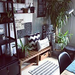 棚/植物/カインズホーム♡/ニトリベンチ/ラグマット...などのインテリア実例 - 2016-06-08 15:35:04