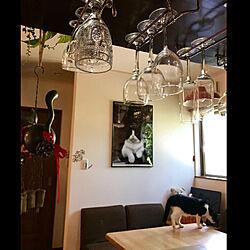 壁/天井/ダイニングテーブル&チェア/ワイングラスホールダー/ワイングラス/吊り棚...などのインテリア実例 - 2018-09-22 12:43:58
