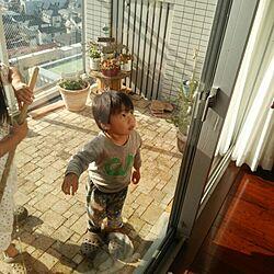 ベランダ/窓拭き/大掃除/玄関/入り口のインテリア実例 - 2014-12-28 13:24:32