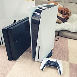 リビング/PS5/PlayStation 5のインテリア実例 - 2020-12-19 13:09:28