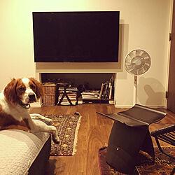 団らんスペース/ゼロキューブ/愛犬と暮らす家/中庭のある家/ゼロキューブ回...などのインテリア実例 - 2020-07-01 15:21:12