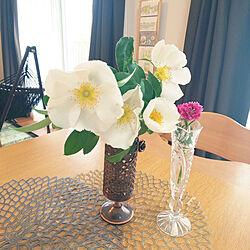 リビング/バラ/なでしこ/花のある暮らし/グリーンのある暮らし...などのインテリア実例 - 2021-04-14 10:02:12