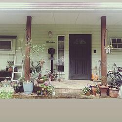 植え替え/鉢増し/玄関/入り口のインテリア実例 - 2020-03-28 09:38:25