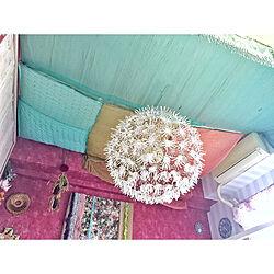 ベッド周り/インド/天井を布で覆う/天井をデコレーション/賃貸...などのインテリア実例 - 2018-04-20 01:57:34