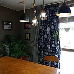 カーテン/手づくりカーテン/IKEAカーテン生地/IKEA/イケア...などのインテリア実例 - 2017-04-22 12:01:40