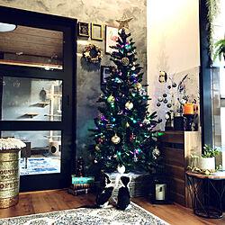 クリスマスツリー/クリスマス/まめとうめ/冬支度/ニトリ...などのインテリア実例 - 2019-10-31 17:33:43