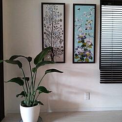 壁/天井/RCの出会いに感謝♡/いいね、フォロー本当に感謝です♡/シンプルな暮らし/植物のある暮らし...などのインテリア実例 - 2021-04-25 10:33:23