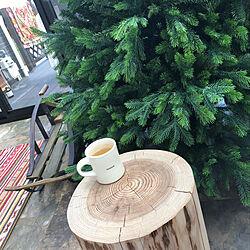 部屋全体/クリスマス/クリスマスツリー/コンサバトリー/サンルームのインテリア実例 - 2018-10-14 19:22:46