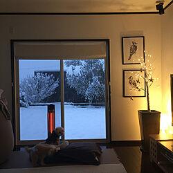間接照明/リビング/Yogibo Max/IKEA/ニトリ...などのインテリア実例 - 2021-01-06 16:04:42