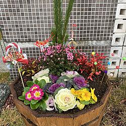 お正月飾り/植物と暮らす/ガーデニング/カフェ風/玄関/入り口のインテリア実例 - 2020-12-28 10:55:37