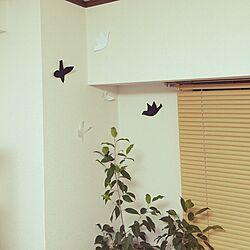 壁/天井/とりさん/観葉植物/ブラインド 木目調/鳥さんのインテリア実例 - 2015-06-01 22:13:28