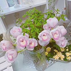 お花のある暮らし/シンビジウム/花瓶/フラワーベース/おうち時間...などのインテリア実例 - 2021-04-20 06:15:38