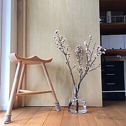 部屋全体/シューメーカーチェア/桜/フローラ/枝もの...などのインテリア実例 - 2018-03-04 14:00:37