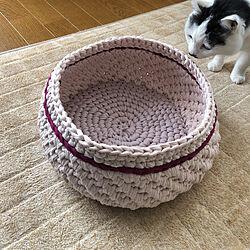 ベッド周り/ズパゲッティ猫ベッド/ハンドメイド/手編みのかご/かぎ針編み...などのインテリア実例 - 2018-04-07 15:54:31