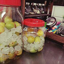 キッチン/梅シロップ/手作りのインテリア実例 - 2015-06-13 19:56:52