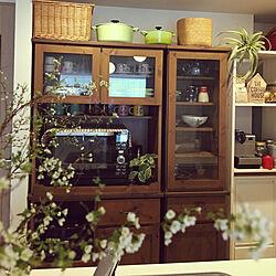 キッチン/雪柳/花のある暮らし/枝物/暮らし...などのインテリア実例 - 2018-03-08 12:18:27