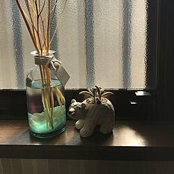 キッチン/貝殻/植物/窓/しろくま...などのインテリア実例 - 2017-04-14 15:05:37