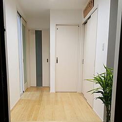 玄関/入り口/観葉植物のある暮らし/スッキリさせたい/シンプル/カメラマーク消し...などのインテリア実例 - 2018-05-09 23:56:26