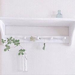 DIY/ホワイトインテリア/雑貨/レトロ/観葉植物...などのインテリア実例 - 2019-07-15 15:06:53