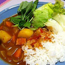 キッチン/晩ご飯のインテリア実例 - 2013-01-02 01:09:33
