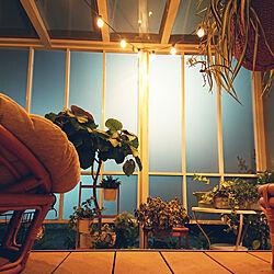 玄関/入り口/NO GREEN NO LIFE/Botanical Style/植物に囲まれ隊/テラスガーデン...などのインテリア実例 - 2018-07-29 20:01:00