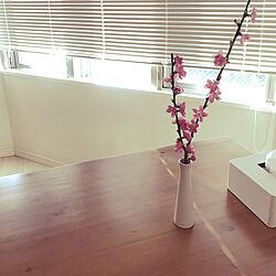 リビング/花のある暮らしのインテリア実例 - 2019-02-25 08:40:59