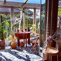 植物のある暮らし/ウッドブラインド/建売をオシャレにしたい/ガーデンテーブル/ガーデンルーム...などのインテリア実例 - 2021-04-10 17:43:46