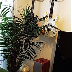 空気清浄機/空気洗浄機/楽器のある部屋/観葉植物のインテリア実例 - 2015-03-15 14:19:58