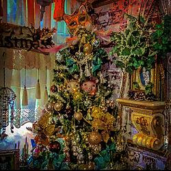 ガラスの森美術館でベネチアンマスク/クリスマス/天使ちゃま/FAKEGREEN/ゆっくりお邪魔します(๑˃̵ᴗ˂̵)...などのインテリア実例 - 2020-12-25 11:44:42