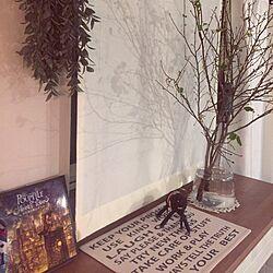 リビング/蓄熱暖房機/蓄熱暖房機の上の棚/枝もののインテリア実例 - 2017-01-25 17:30:26