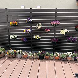 DIY/ウッドデッキ/目隠しフェンス/アウトドアリビング/自宅グランピング...などのインテリア実例 - 2021-04-07 11:45:45
