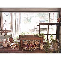 棚/窓枠/アクセサリースタンド/ディスプレイラック/ダイソー...などのインテリア実例 - 2018-01-06 13:18:45