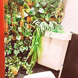 フェイクグリーンのある暮らし/フェイクグリーン/DIY/バス/トイレのインテリア実例 - 2021-09-07 00:30:21