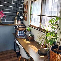 渋色/窓枠DIY/観葉植物/DIY/白黒茶色...などのインテリア実例 - 2020-05-24 13:07:34