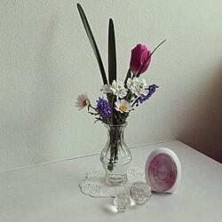 玄関/入り口/植物のある暮らし/ルームフレグランス/玄関飾り/香りのある暮らし...などのインテリア実例 - 2021-04-03 08:35:56