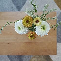 ガーベラ/花のある暮らし/暮らしを楽しむ/植物のある暮らし/いいね、フォロー本当に感謝デス☺︎...などのインテリア実例 - 2019-11-20 11:06:20